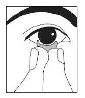 Contact Lenses Fitting Guide by Envision