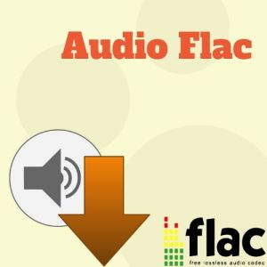 Audio Flac Icon