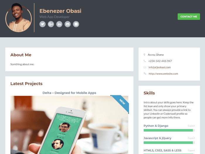 Developer Bio WordPress Theme