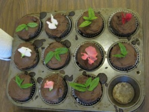 Chocolate_sweet_pea_cupcakes