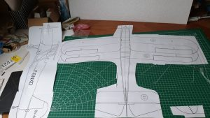 Read more about the article Stampe SV4 epp 85 cm