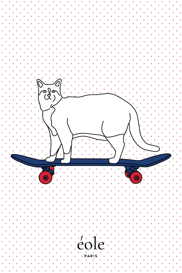 Cat And Skate White - EOLE PARIS