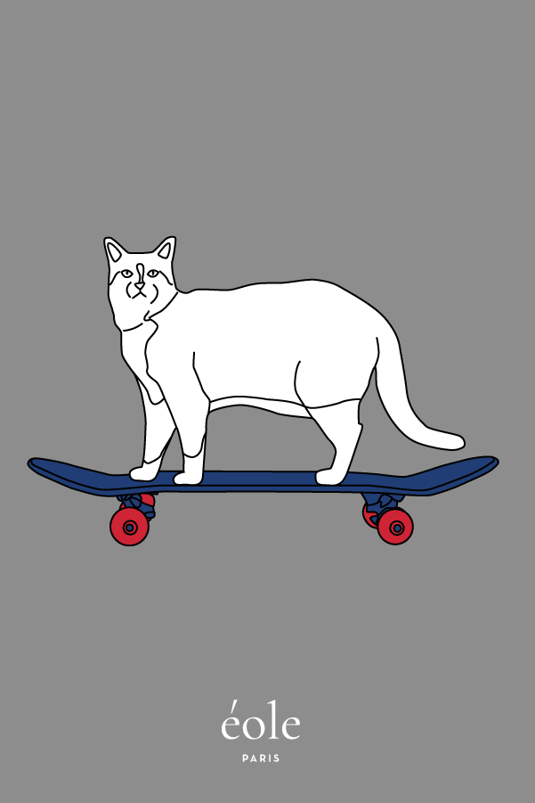 Cat And Skate Grey - EOLE PARIS