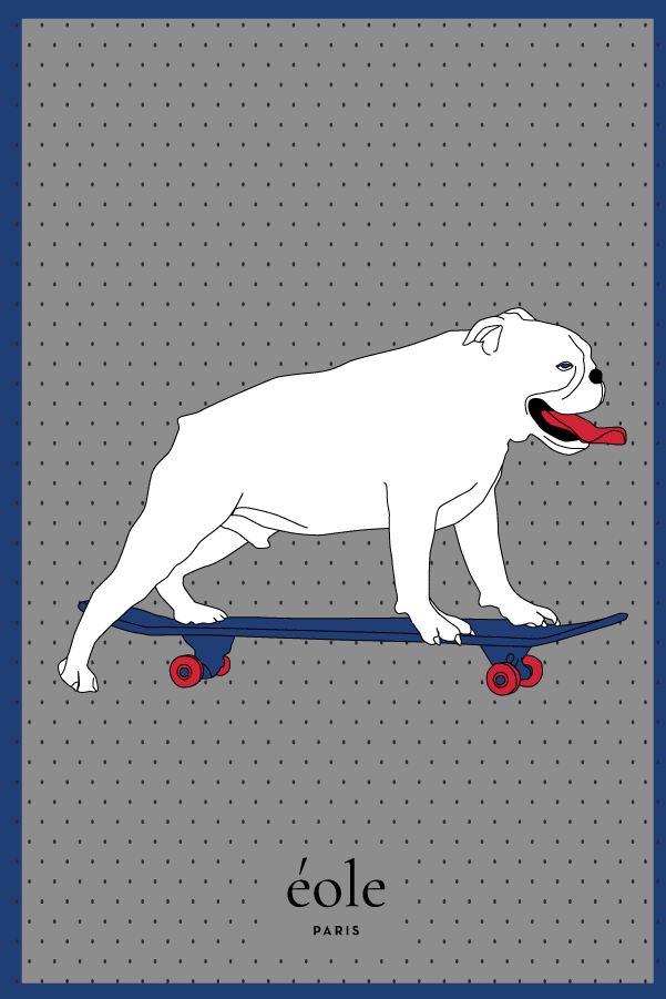 Dog On Skate Blue And Grey - EOLE PARIS