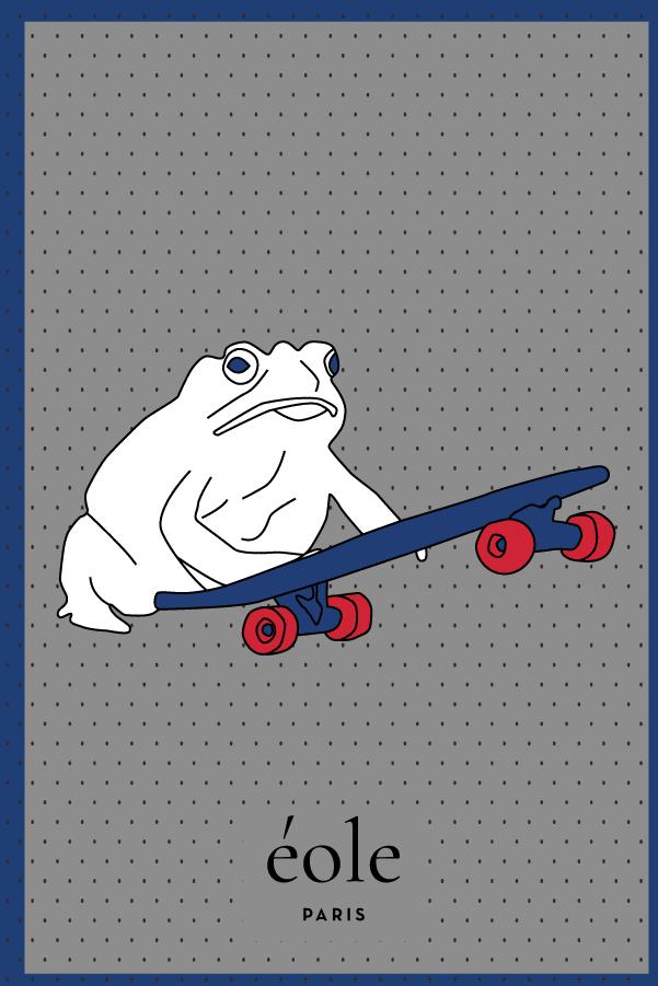 Grenouille et Skate Gris et bleu - EOLE Bleu