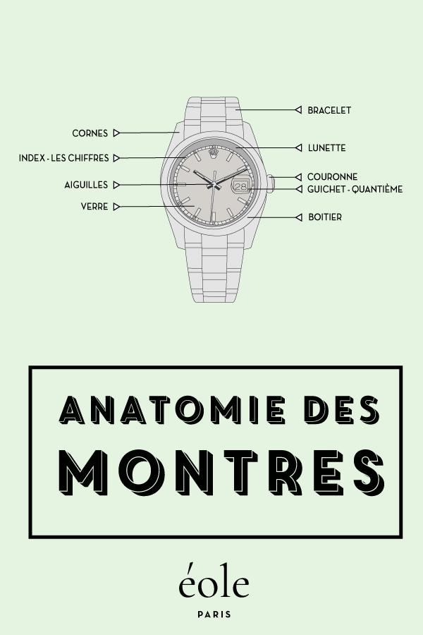 Anatomie des montres - EOLE PARIS