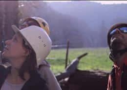 film corporate ginger cebtp 504