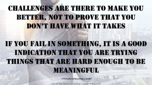 Challenges are there to make you better, not to prove that you don't have what it takes If you fail in something, it is a good indication that you are trying things that are hard enough to be meaningful.