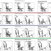 Bowflex Home Gym Workout Plan