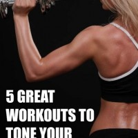 Trx Training Workout Guide Pdf