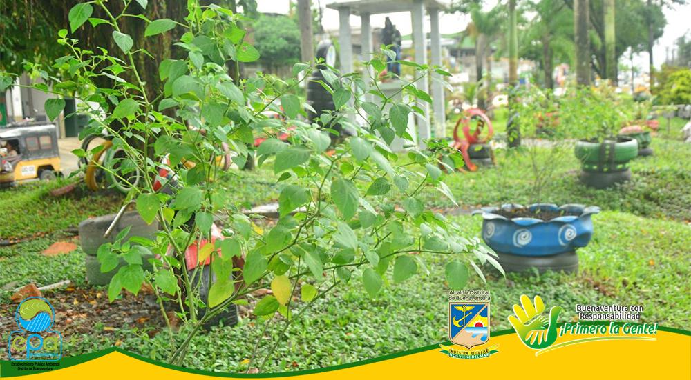 Conmemoración Día Internacional del Árbol (3)