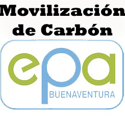 FORMATO DE SOLICITUD PARA SALVOCONDUCTO DE MOVILIZACIÓN DE CARBÓN VEGETAL