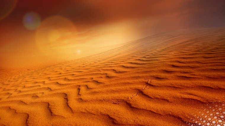The-Virtual-Exhibition-The-Colors-of-Desert-2020