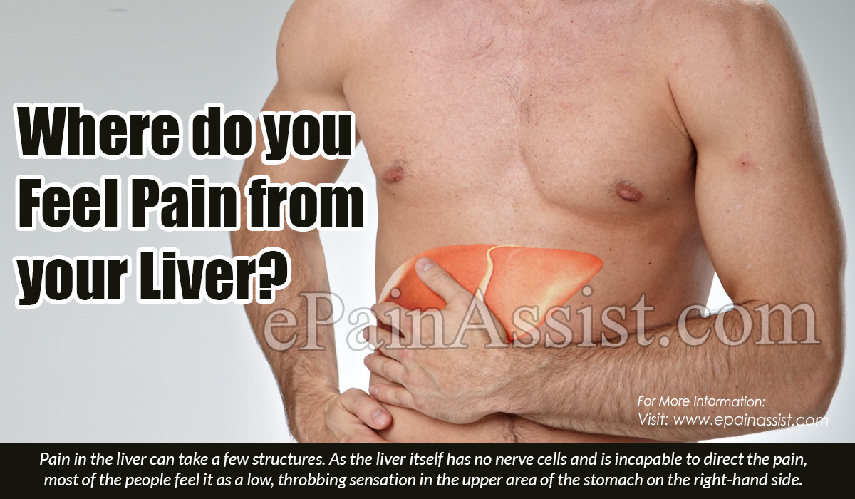 Where do you Feel Pain from your Liver?