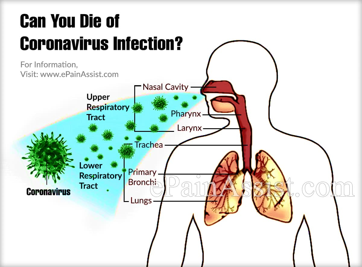 COVID-19, 2019-nCoV or Coronavirus Infection in Human: Symptoms ...
