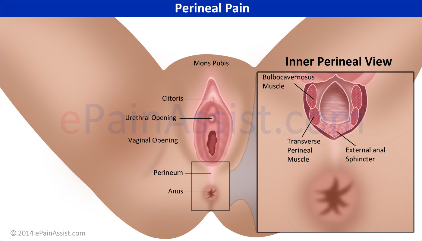hight resolution of perineal