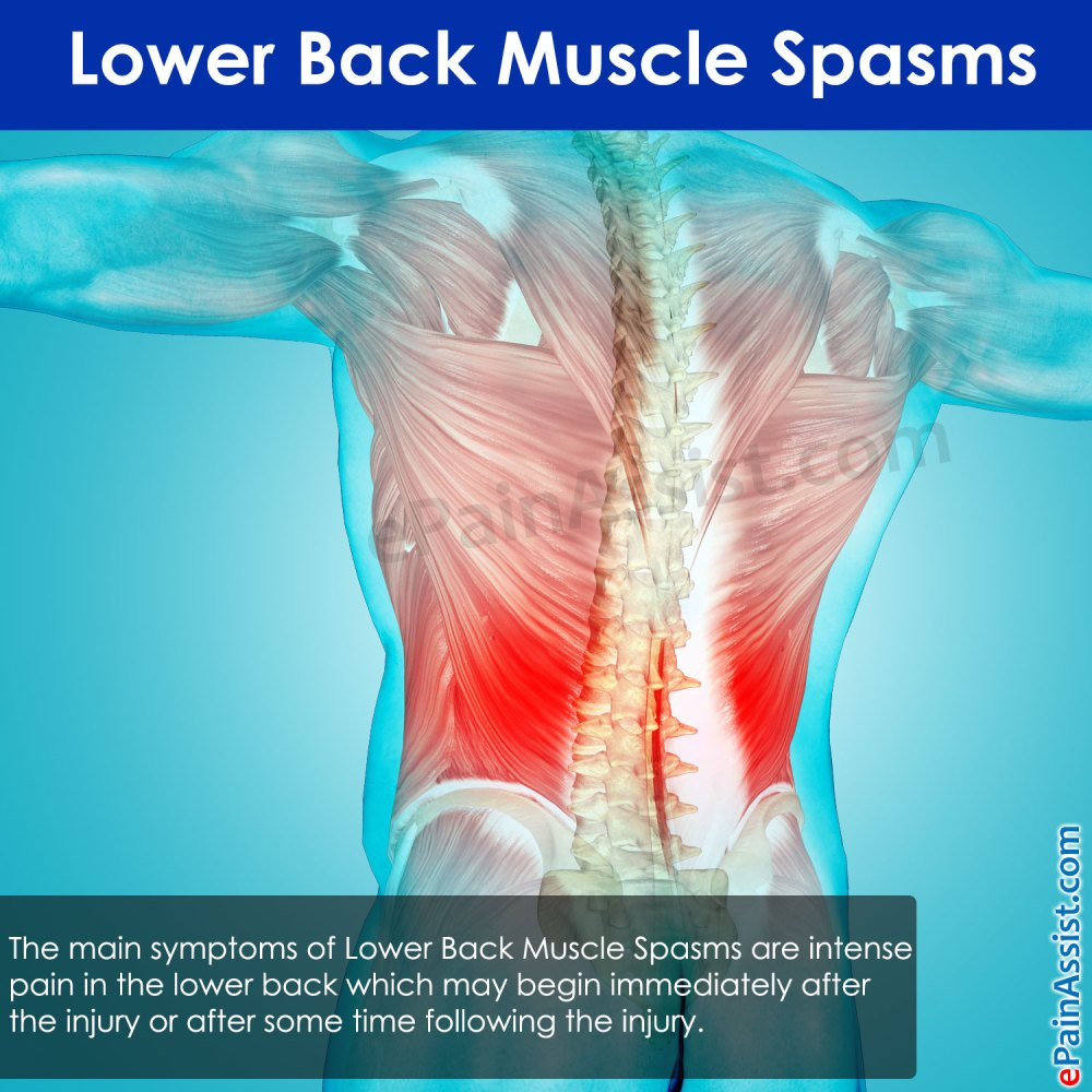 medium resolution of lower back muscle spasms causes symptoms treatment