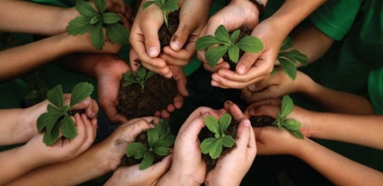 4 dicas para ensinar seu filho a cuidar do meio ambiente