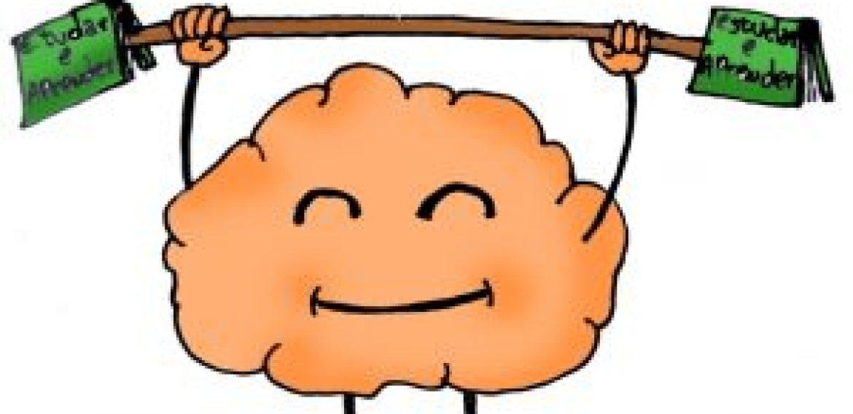 Como o nosso cérebro aprende?