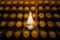 wilson-creek-winery-pearl-wedding-03