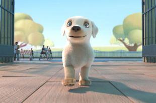Best Short Films Selection - Pip Animated Film - Heartwarming