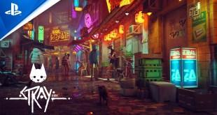 Stray - Teaser Trailer   PS5