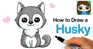 How to Draw a Husky Puppy Easy