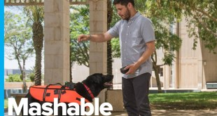 Remote Control Your Dog With This Vibrating Vest