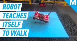 This Artificially Intelligent Robot Taught Itself To Walk | Future Blink