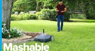 Mowing Your Lawn Could Be Easier than Ever with This Little Robot