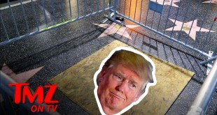 Donald Trump Walk of Fame Star Caged, Boarded Up | TMZ TV