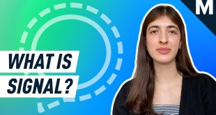 Why Signal is the messaging app everyone is talking about | Mashable Explains
