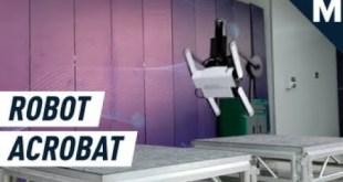 Tiny Robot Acrobat Uses Tail to Do Backflips | Mashable