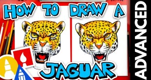 How To Draw A Realistic Jaguar - Advanced - #stayhome and draw #withme