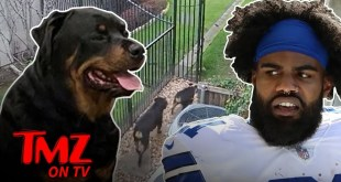 Ezekiel Elliott's Dog Attack Captured On Surveillance Video | TMZ TV