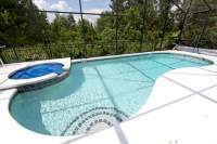 Backyard Swimming Pools - Types and Cost   Epic Home Ideas