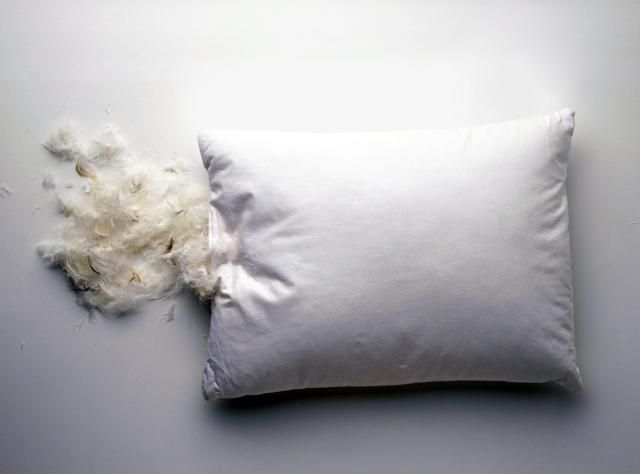 Pillow Best Feather Pillows