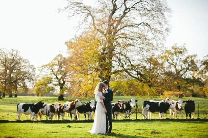 Larchfield Estate Wedding Photographer Northern Ireland_0061