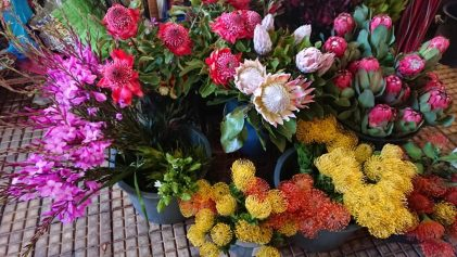 Fresh flowers at the Madeira Framers Market