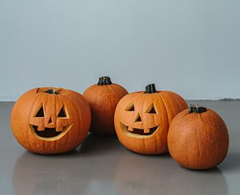 Prevent Halloween pumpkins from rotting early