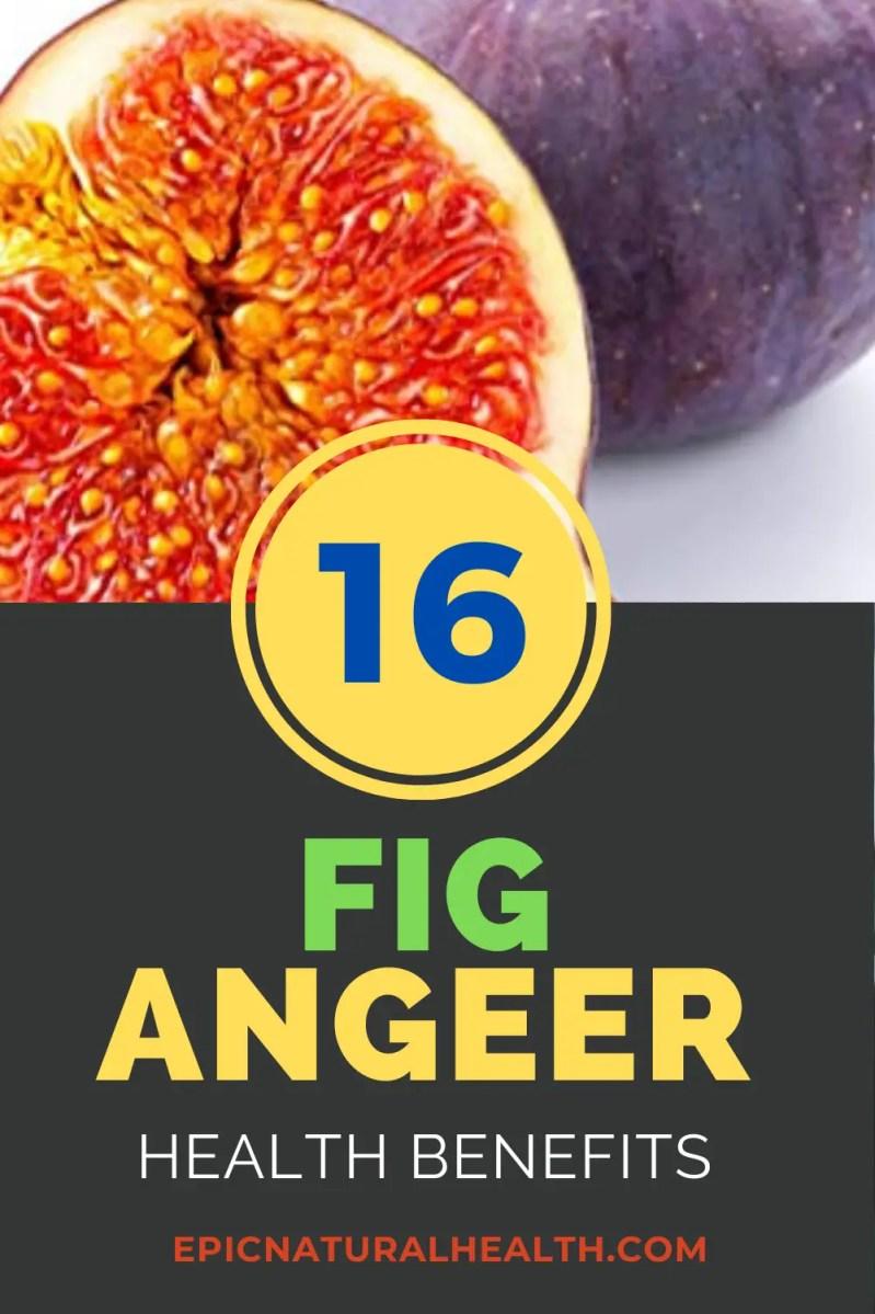 Fig angeer health benefits