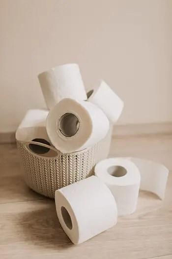 rolls of toilet paper