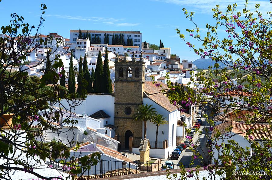 Andalusia-9