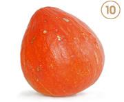 Red Kuri Image