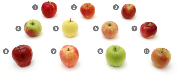 Different Kinds Apples