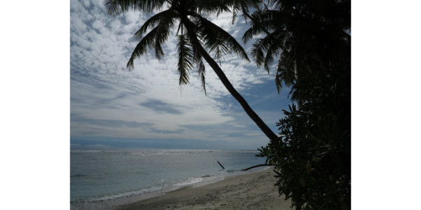 1ère image de l'île