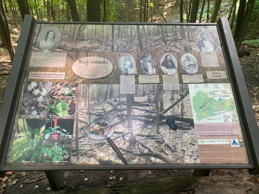 Staring down at one of the interpretive signs along the Elizabeth Fries Ellet trail