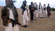 Talibã afegão diz querer o fim da guerra por meio do 'diálogo'