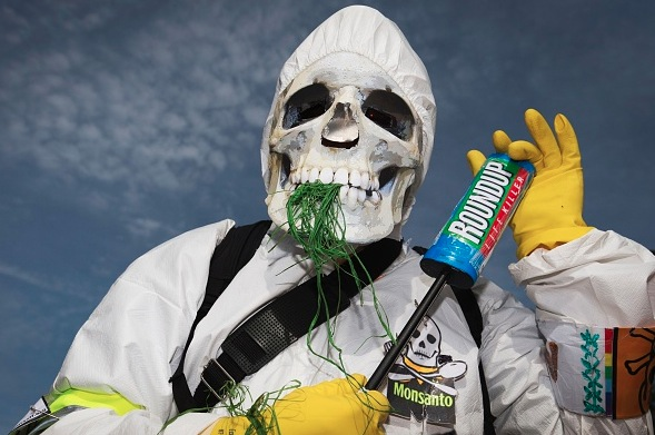 Protest gegen Monsantos Pflanzengift Roundup Foto: JOEL SAGET/Getty Images