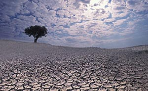 Ученый обнаружил, что его исследования способствуют потеплению климата. Фото: ru.wikipedia.org